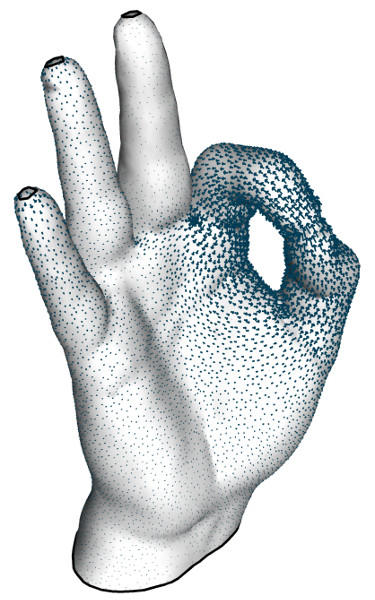 Harmonic Dirichlet field on a hand model